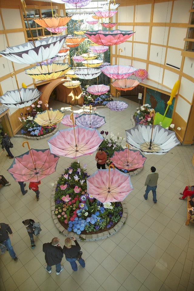 The Cleveland Botanical Gardens hangs 70 Harold Feinstein umbrellas in its foyer to celebrate spring!