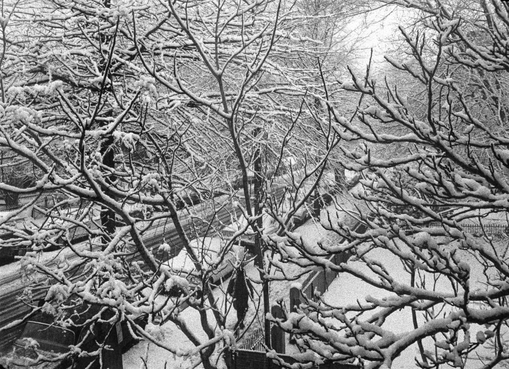 Snow from window, Philadelphia, 1964