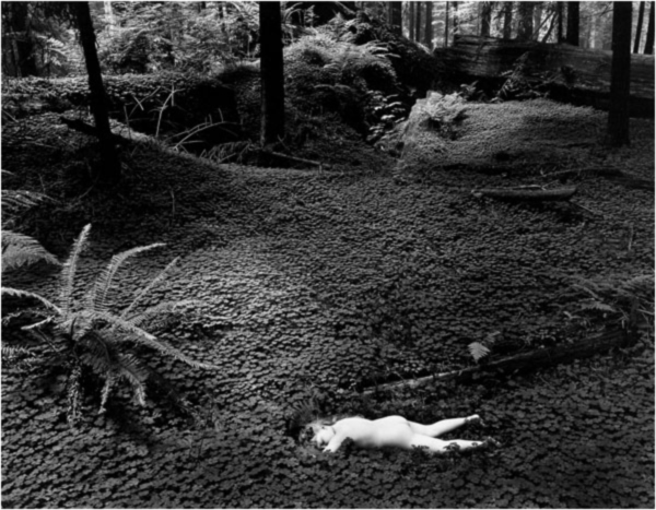 Child in Forest, 1951, Wynn Bullock ©2014 Biullock Family Photography